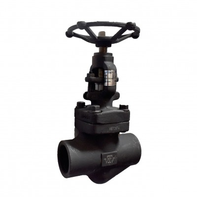 VTV Globe valve, Forged Steel , Screw End, Class 800, 0.5""