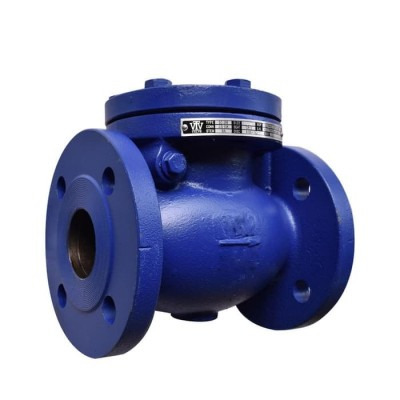 VTV Swing Check Valve, Cast Iron, JIS 10K, 4""